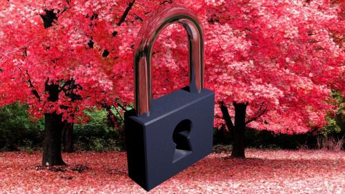 Lock by Haidar CC BY 4.0 Source